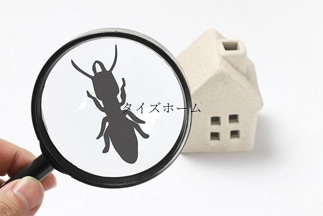 『テナントビルにおける害虫駆除の必要性について解説!』