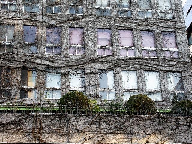 『古いテナントビルは建て替えるべき?それとも売却するべき?』