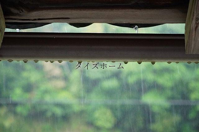 『雨の日の内見で必ずチェックするべきポイントとは?』